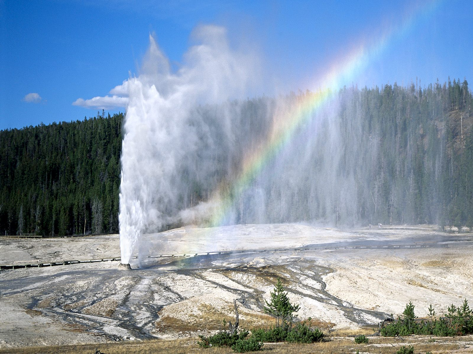 Duga - Page 2 Yellowstone20national20park20wyoming