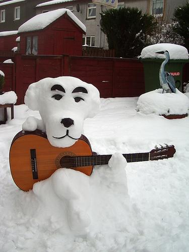 снежни китари